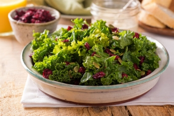 Baby Kale Salad with Cranberry Vinaigrette