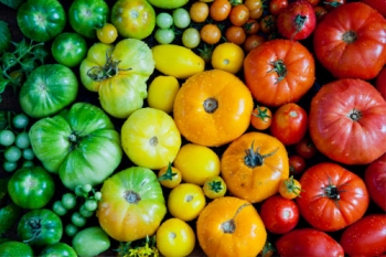 Better Health in your Backyard: Plant the Rainbow